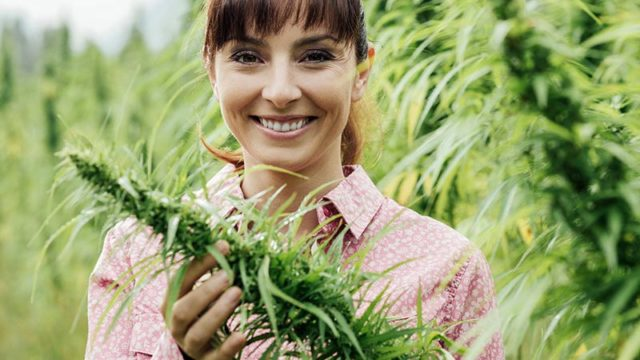 A young smiling woman in a cannabis or marijuana or hemp field. Pic: Getty