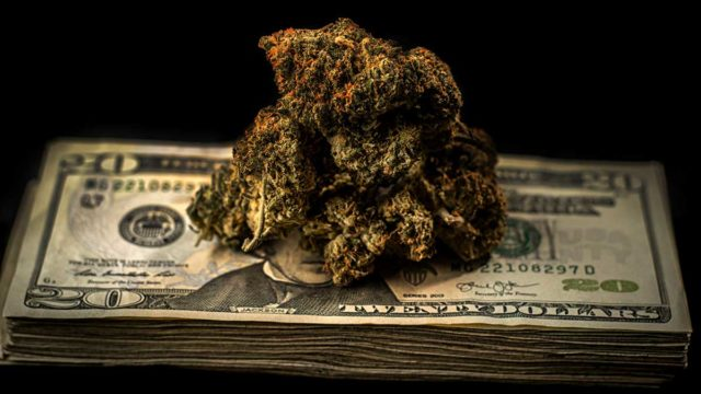 cannabis_money