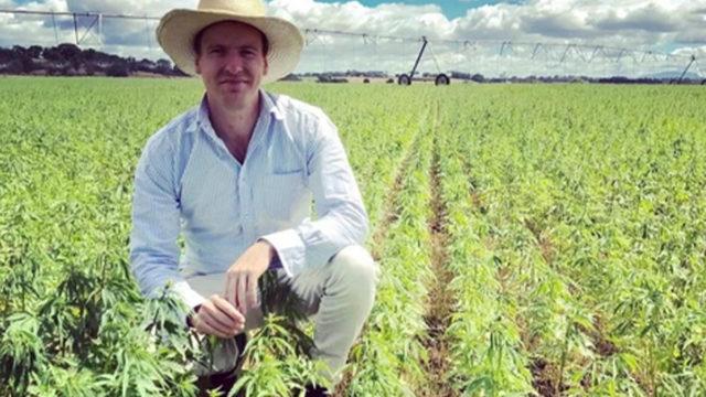 ECS Botanics cannabis